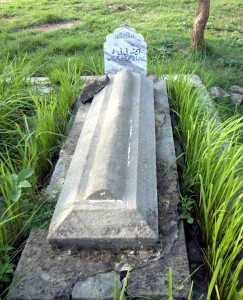 The Grave of my Maternal Grandmother, Amina Bibi